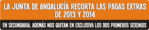Banner pagas extra